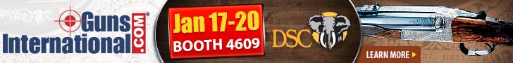2019 DSC Convention