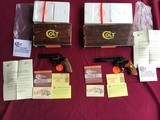 """COLT BOA'S 357 MAGNUM, CONSECUTIVE SERIAL NUMBER SET, 4"""" & 6"""" ROYAL BLUE, UNTURNED, UNFIRED, 100% COND. IN ORIGINAL BOXES"""