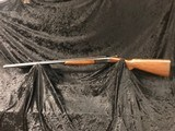 Winchester Model 24 12 gauge