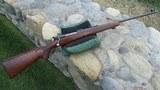Winchester Model 70 Pre-64 257 Roberts 1938