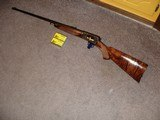 Win. Model 63