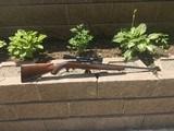 Winchester model 88 , 243 caliber - 13 of 15