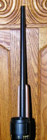 Ruger M77 caliber .22 Hornet - 12 of 15