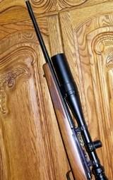 Ruger M77 caliber .22 Hornet - 3 of 15