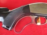 Remington Nylon Model 76 Apache Black/Chrome Lever