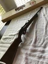 Ruger 10/22 Magnum