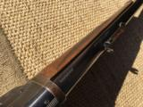 Deluxe 1895 Winchester in super rare 30-03 and in takedown, oil finish stock - 6 of 15
