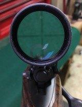 P.L. Holehan Safari grade hunter - 20 of 20