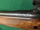 P.L. Holehan Safari grade hunter - 11 of 20