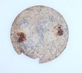 Civil War Dug US Eagle Breastplate from VA - 2 of 3