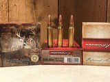 Norma .308 Ammo