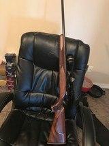 Remington 547c17hmr xxx wood