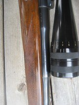 Browning Safari 243 FN - 9 of 13