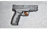 Springfield ~ XD-9 ~ 9mm