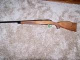 Remington 700 BDL Varmint Special 243 Win. - 1 of 14