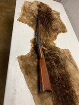 Winchester Saddle Ring Carbine 32-40 - 11 of 12