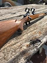 Remington Varmint