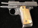 Sig Sauer P238 Nitron Micro-Compact - 4 of 4