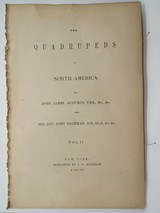 3 volumes Audubon 1st Edition Quadrupeds of North America 1850's Text only Vol.1, 2, & 3 - 2 of 5