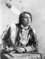 Blunderbuss owned by Chief Red Shirt of the Indian Wars and Buffalo Bill's Wild West Show - 8 of 15