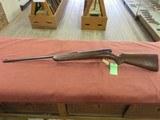 Winchester 74, 22LR