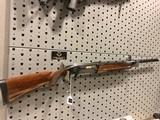 Browning Gold 10 GA High-Gloss Walnut