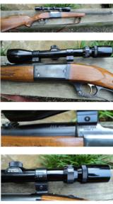 Savage 99DL 243 Winchester