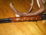 Winchester 38-55 Crazy Horse Lever Action - 5 of 8