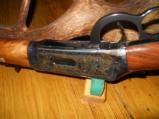 Winchester 38-55 Crazy Horse Lever Action - 6 of 8