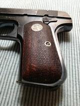 Colt - 7 of 13