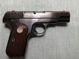 Colt - 4 of 13