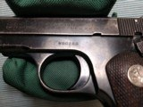 Colt - 3 of 13