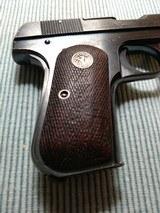 Colt - 8 of 13