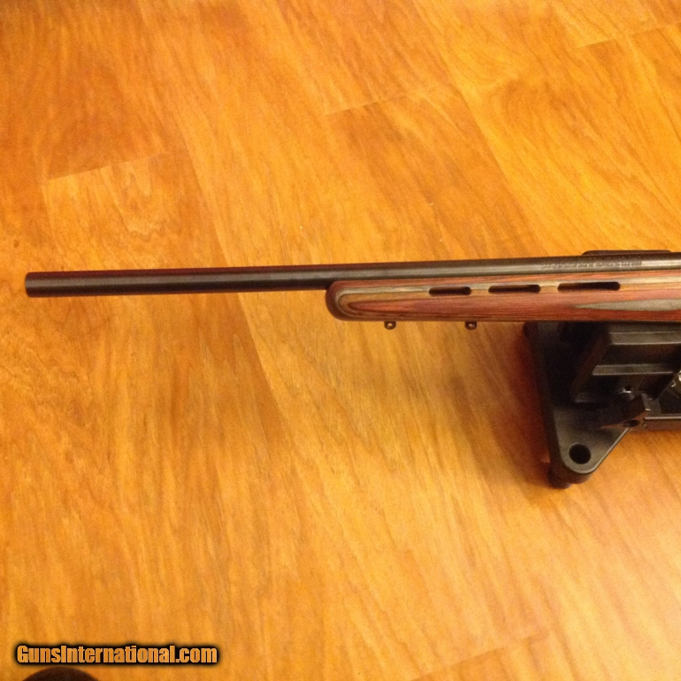 Savage 17 Hmr Stock
