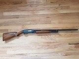 "Vintage 1920s Winchester Model 12 Pump Shotgun, 16g, Full Choke, 30"" bbl - 4 of 15"