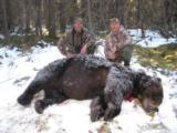 Guided Alaska Grizzly Bear Hunts
