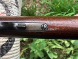 Winchester 1876, 50-95 Express - 8 of 10