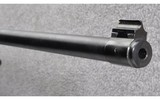 Ruger ~ 10/22 Mag Research ~ .22 LR - 6 of 10