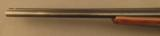 Stoeger .410 Coach Gun - 7 of 12