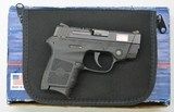 Smith & Wesson Bodyguard 380 With Red Laser Sight - 1 of 13