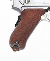 DWM 1900 American Eagle Luger, 7.65mm - 5 of 17