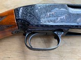 Winchester Model#12, 12g, Restored, Beautifully Engraved, Silver enlay dogs & Birds - 14 of 14