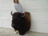 Big Woody Bison World Record Mount or Bronze- 9 of 9