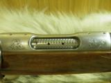 COLT SAUER GRADE IV SPORTING RIFLE CAL: 243WITH WHITE TAIL ENGRAVING SCENE, 100% NEW IN FACTORY BOX! - 12 of 16
