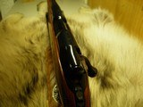 """COLT SAUER SPORTING RIFLE CALIBER 22/250 """"SECOND RAREST"""" CAL: 100% NEW AND UNFIRED IN FACTORY BOX! - 10 of 15"""