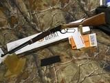 """Henry H004, Golden Boy Lever 22 Short/Long/Long Rifle, 20"""" BARREL, 16 LR / 21 Short,American Walnut, StkBrassReceiver / Blued Barrel, NEW I - 9 of 19"""