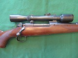 WINCHESTER M70 PRE WAR .22 HORNET. 4X GERMAN OIGEE SCOPE - 1 of 11