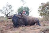 7 Species 12 days incl. a Buffalo cow - Limpopo & Mpumalanga - 3 of 8