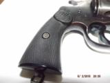 Colt New Service 44-40 - 8 of 15