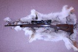 Tom Shelhamer-A & M Rifle Co 17 Javelina - 1 of 14